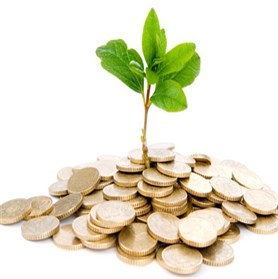 LOANS FOR AGRICULTURAL PURPOSE